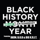 DJ Greg Street – I Am Somebody (feat. Akon, B.o.B & Big K.R.I.T.) – Single [iTunes Plus AAC M4A] (2016)
