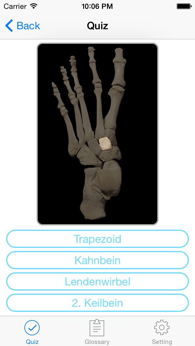 Anatomie Quiz & Glossar - Tran Tuan - App