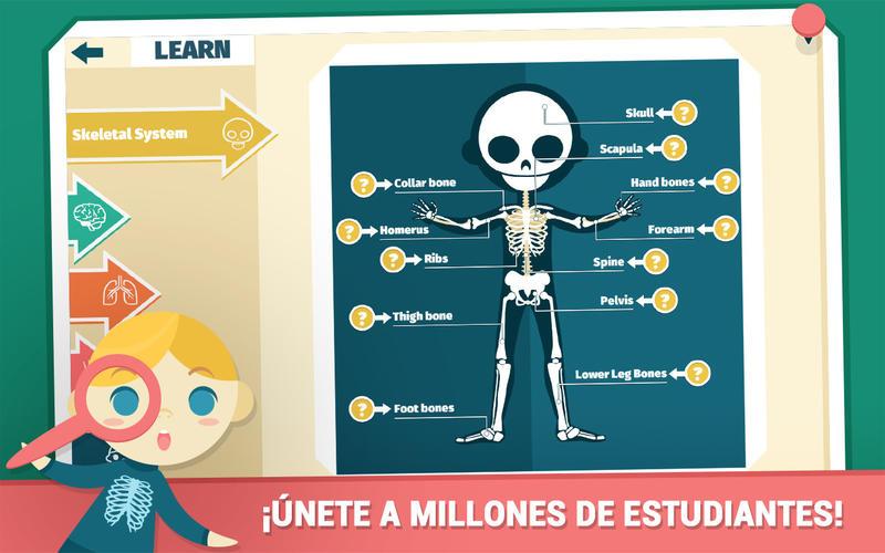 Atlas De Anatomía Para Niños Por Education Terra OOO