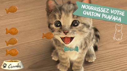 download Little Kitten - mon chat préféré apps 3