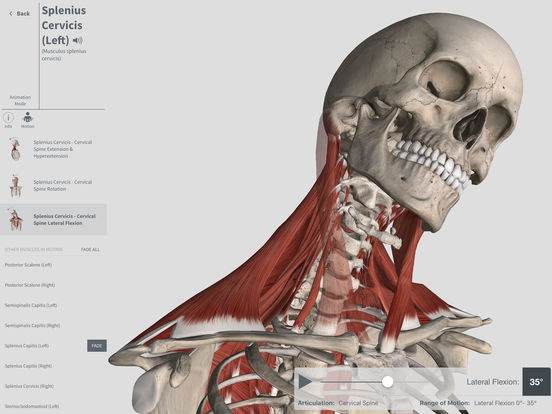 Complete Anatomy Screenshot