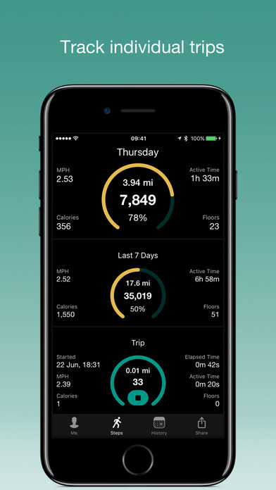 Stepwise Schrittzähler Screenshot