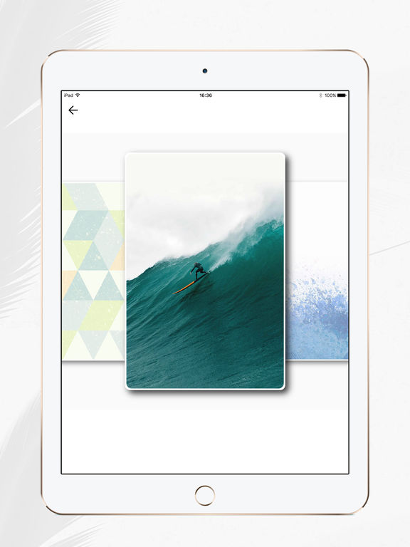 Icon Wechsler und Hersteller Pro : Verknüpfung Screenshot