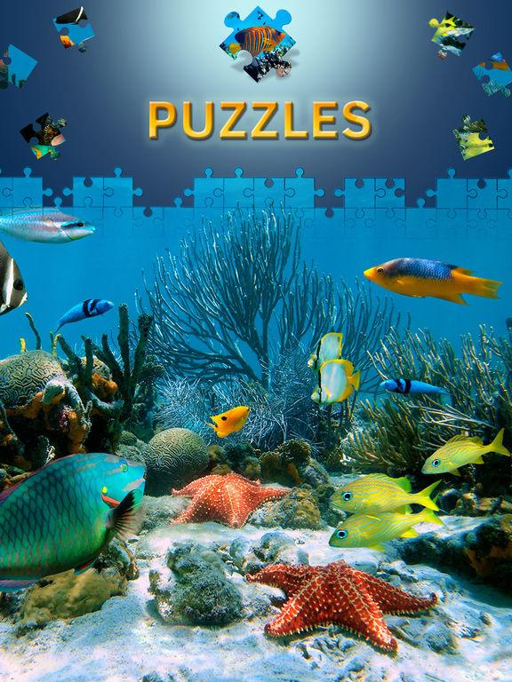 jeux de puzzle de dauphin puzzle adulte paysage dans l app store. Black Bedroom Furniture Sets. Home Design Ideas