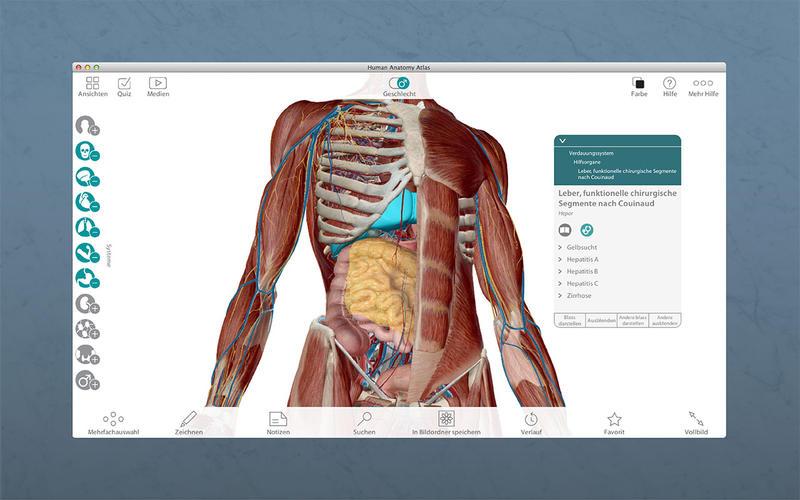 Atlas der menschlichen Anatomie Bei Argosy Publishing