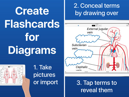 Flashcards for Diagrams - Flashcard Diagram Study Screenshots