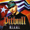 M.I.A.M.I. (Clean Version), Pitbull