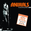 Top songs of 1964 - House of the Rising Sun - The Animals