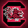 South Carolina College SuperFans for iPhone