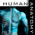 Human Body Encyclopedia D