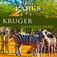 Nature Parks - Kruger National Park Travel App