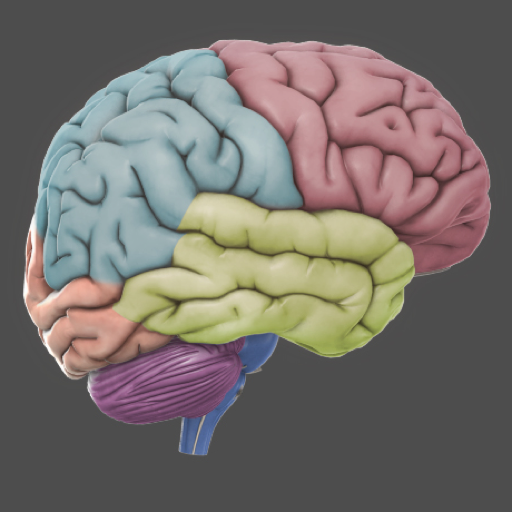 3d brain app for free iphone ipad ipod touch