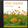 After Trauma - Lynda Hudson