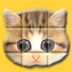 Slide Puzzles Cat HD