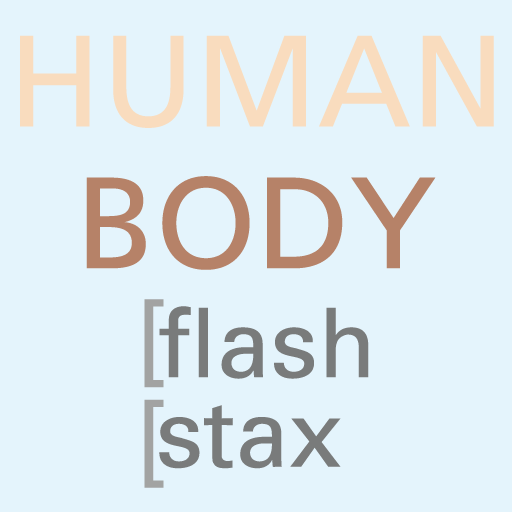 flash stax  human body