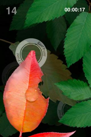 AQUA FOREST 2 Lite -morning dew