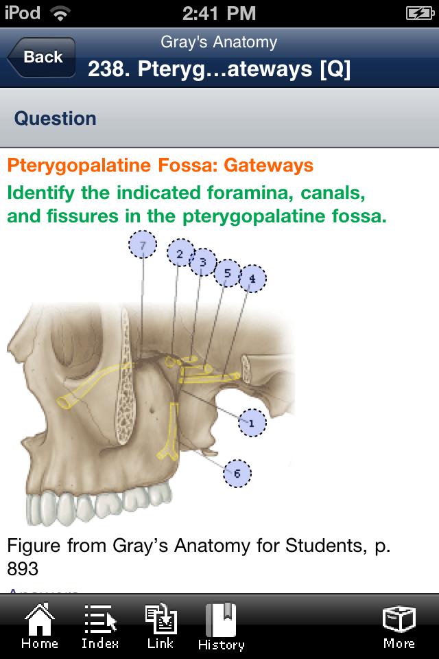 App Shopper Grays Anatomy Students Flash Cards Medical