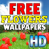 FREE Flowers Wallpapers HD