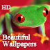 All Beautiful Wallpapers Collection HD