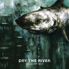 New Ceremony, Dry the River