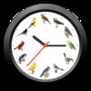 BirdClock for mac