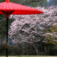 和の壁紙『京都』