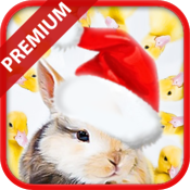 What Doesn't Belong? Christmas Premium - Educational Brain Teaser Game for Kids icon
