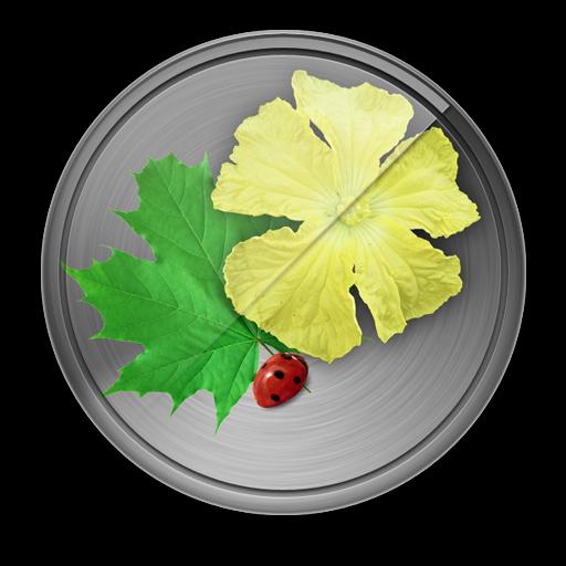 Icon.512x512-75
