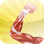 Human Muscle Encyclopedia Plus+ icon
