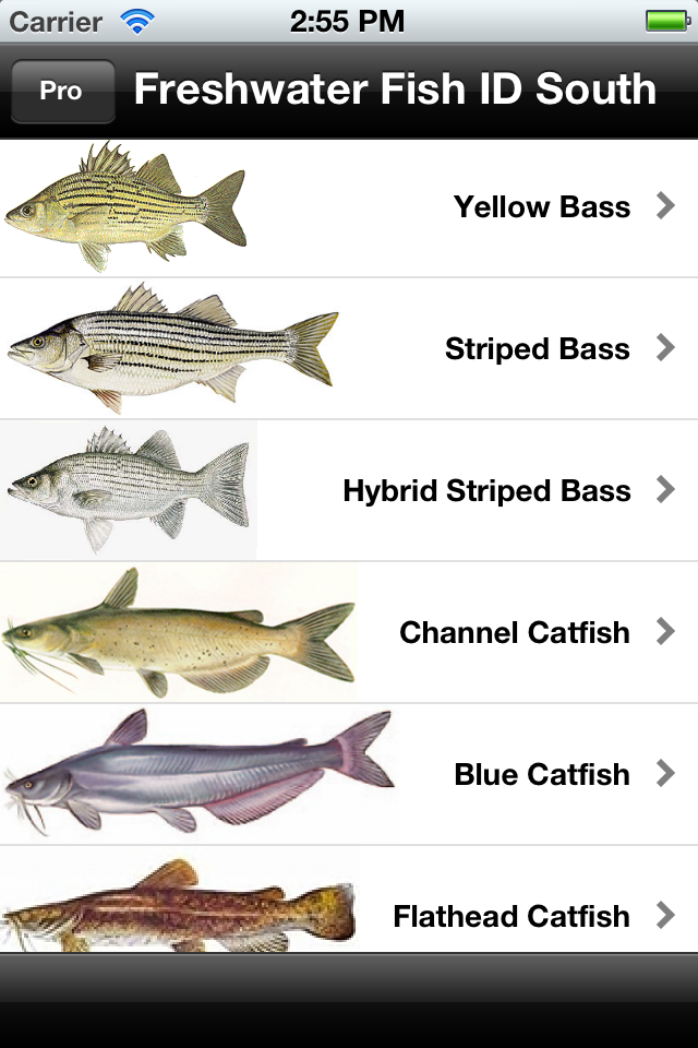Freshwater fish id south lite download ios game app for Freshwater fishing games