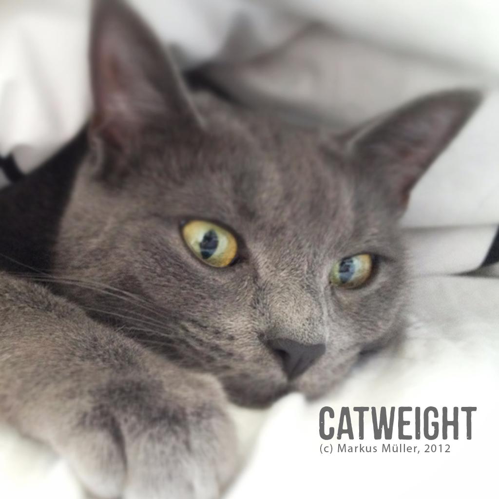 CatWeight