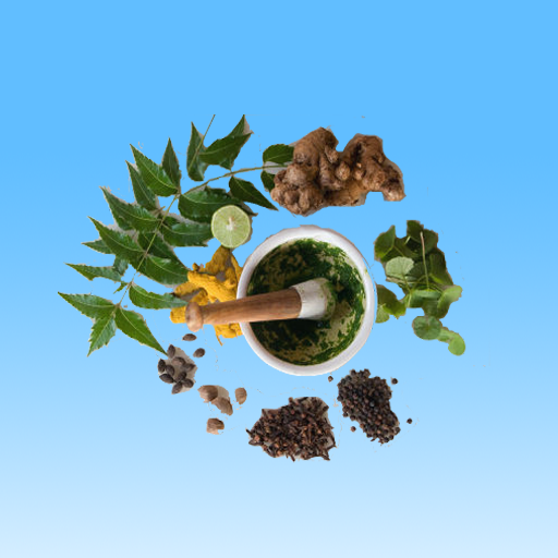 Ayurvedic Herbs And Minerals