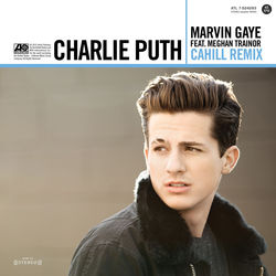 View album Marvin Gaye (feat. Meghan Trainor) [Cahill Remix] - Single