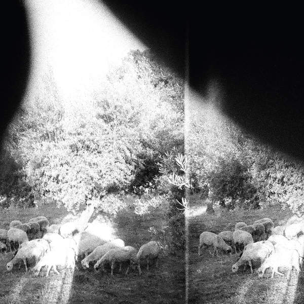 Godspeed You! Black Emperor – Asunder, Sweet and Other Distress (2015) [iTunes Plus AAC M4A]
