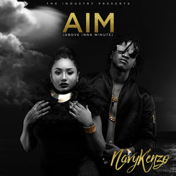 View album AIM (Above Inna Minute)