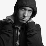 View artist Eminem
