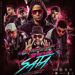 View album Tremenda Sata, Pt. 2 (Remix) [feat. Arcángel, Ñengo Flow, Ñejo, Lui-G 21+, Farruko, Zion & J Balvin] - Single
