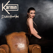 Karmin – Didn't Know You – Single [iTunes Plus AAC M4A] (2015)