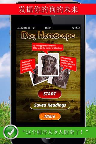 犬星术应用程序:有趣的你的宠物的星术