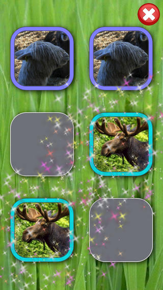 Play & Learn Animals LITE - Baby Flashcard Game iPhone Screenshot 3