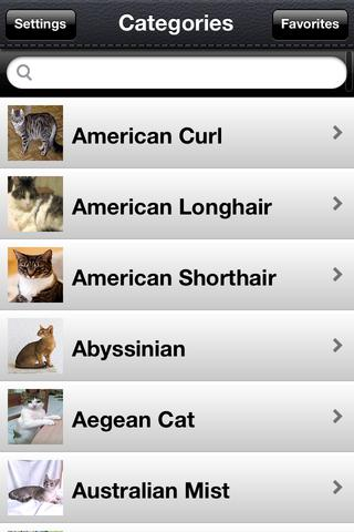 Cat Breeds Photo Catalog