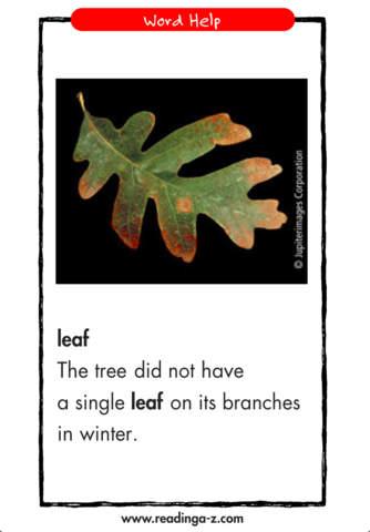 LAZ Level aa Library iPhone Screenshot 4