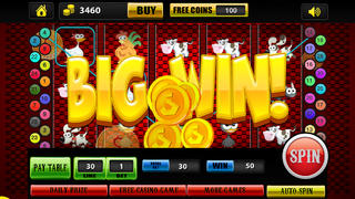 Animals & Pets Money Casino Slot Machine HD (Spin the Wheel and Win)