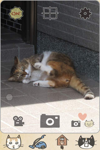 CatShot! screenshot 1