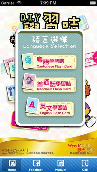D.I.Y. Flash Card
