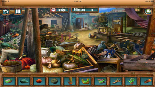 Hidden Objects 7 Mystery World