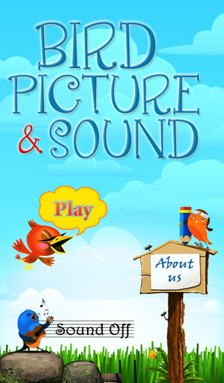 Bird Picture Sound