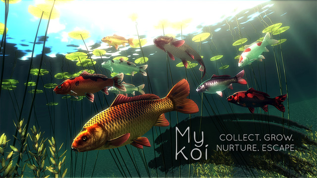My Koi Screenshots