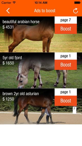 Horseclicks.com Infinity App