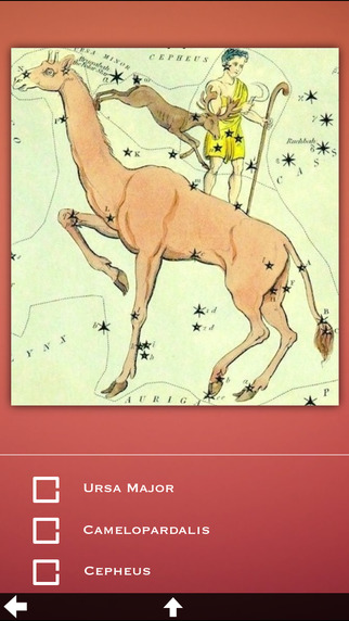 Space Constellations